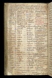 Stowe MS 944, f. 28v