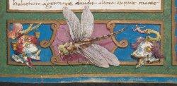 Burney MS 132, f. 2