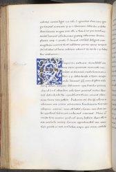 Burney MS 154, f. 46v