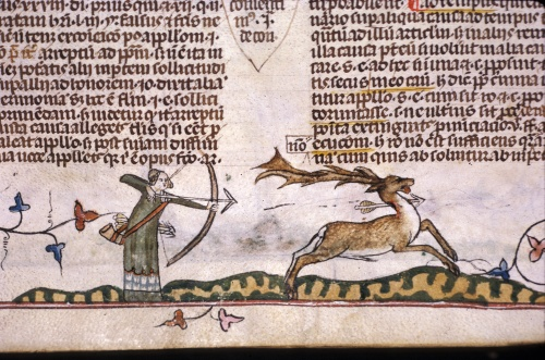 Man shooting at a stag