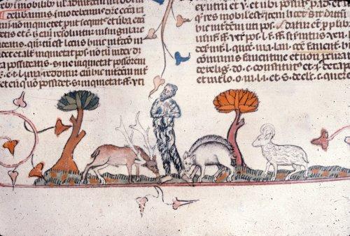 Hermit with animals