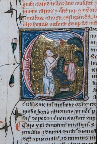 Caro, Carnis maceracio (Flesh, Mortification of the flesh)