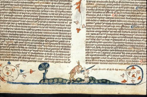 Rabbit beheading a man