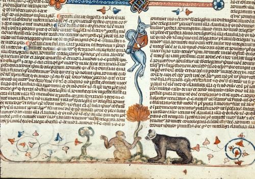 Monkey and bear