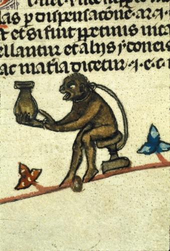 Monkey with a pot