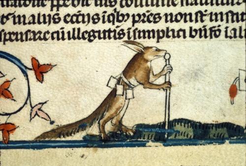 Fox dressed as a palmer