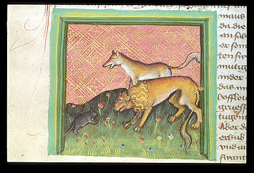 Mouse, fox, and lion