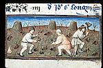 Men working in a vineyard