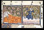 Guillaume de Lorris and Narcissus