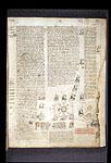 Genealogical diagram