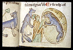 Priest of Ulster and the wolf