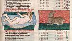 Fluvius (River) and Lepus (Rabbit)