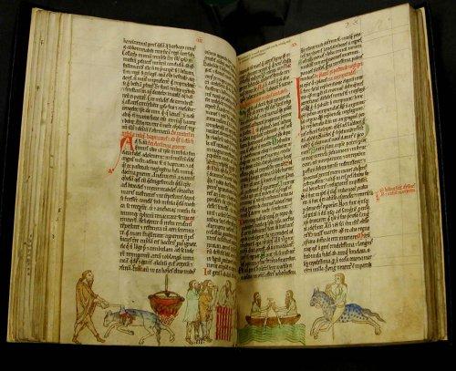 Kingship ritual and the Irish