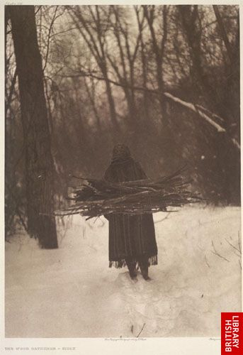 The wood gatherer - Sioux.