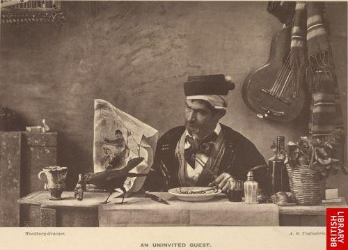 An uninvited guest. A. G. Tagliafero.