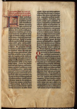 Copy on vellum vol 1 folio 1r