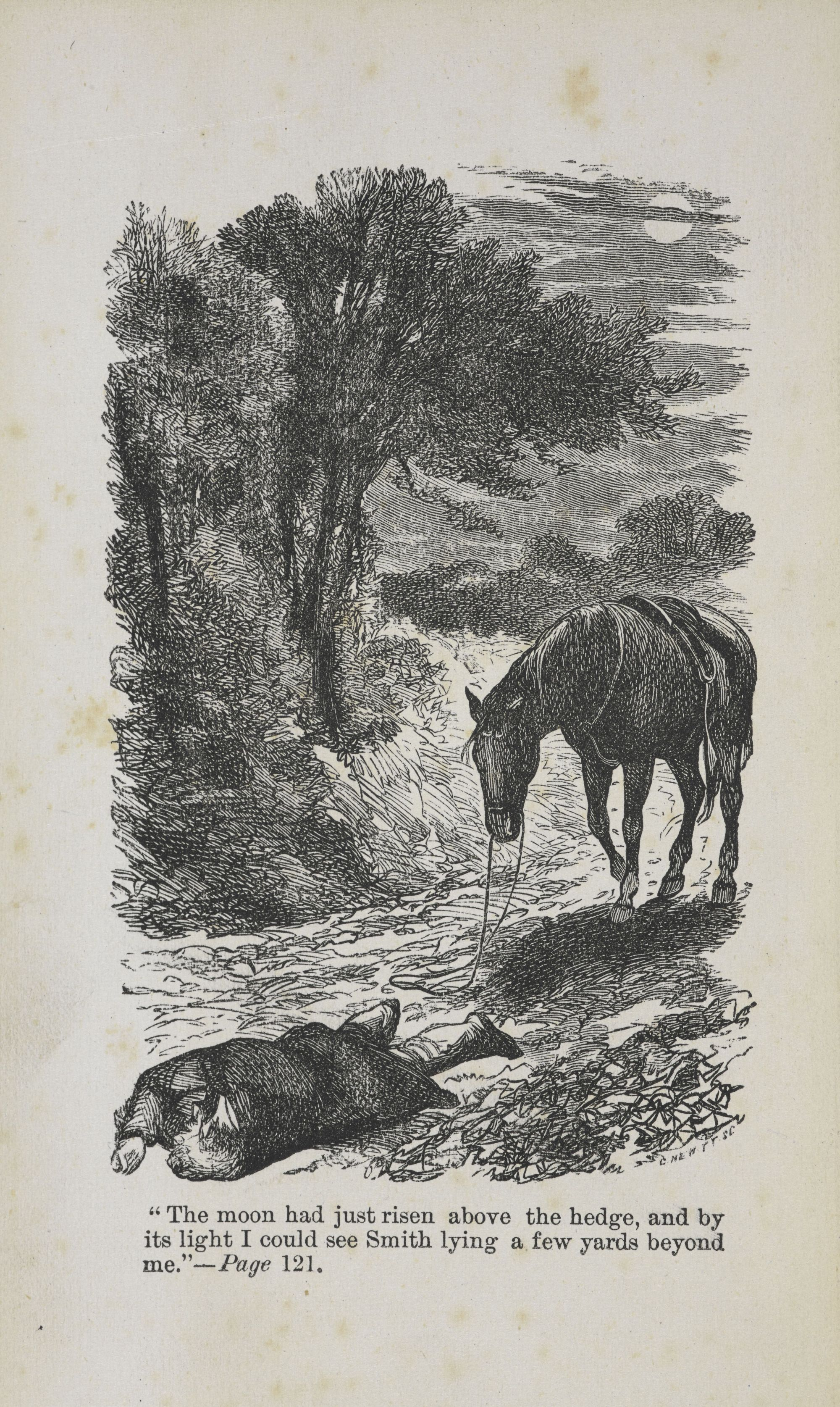 An illustration from Anna Sewell's Black Beauty.