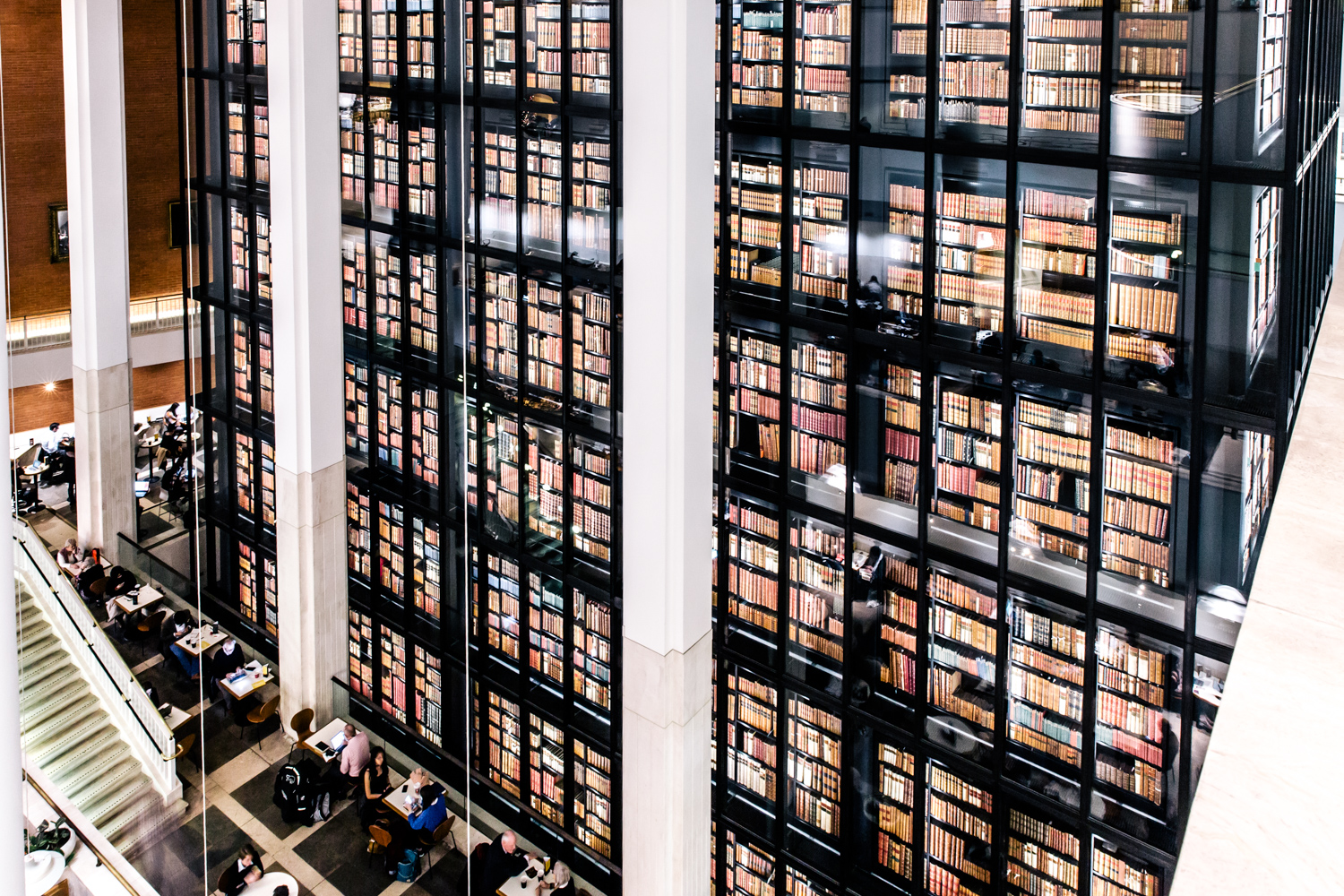 Photo of the King's Library at the British Library, credit Luca Sage