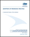 Adoption of promising practice: a systematic review of the literature