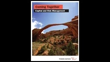 Coming together: capital and risk management