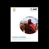 Counting on uncertainty: the economic case for community based adaptation in North-East Kenya