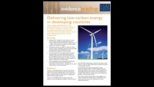 Delivering low-carbon energy in developing countries