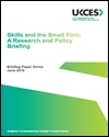Skills and the small firm: a research and policy briefing