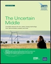 The uncertain middle: innovation lessons for low carbon energy technology from demonstration projects and trials