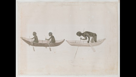 Two men paddling in a boat with a another man in a boat behind them bending over the sideand holding a three-pronged spear.