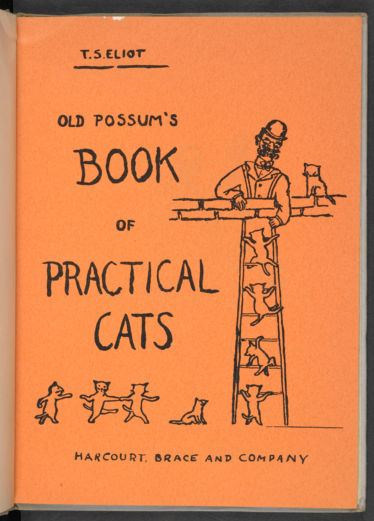 T S Eliot Book of Practical Cats