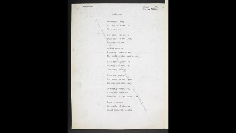 Typescript drafts of 'Mushrooms' and 'Sleep in the Mojave Desert' by Sylvia Plath