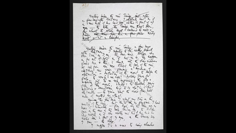 Manuscript draft for an article on river pollution by Ted Hughes
