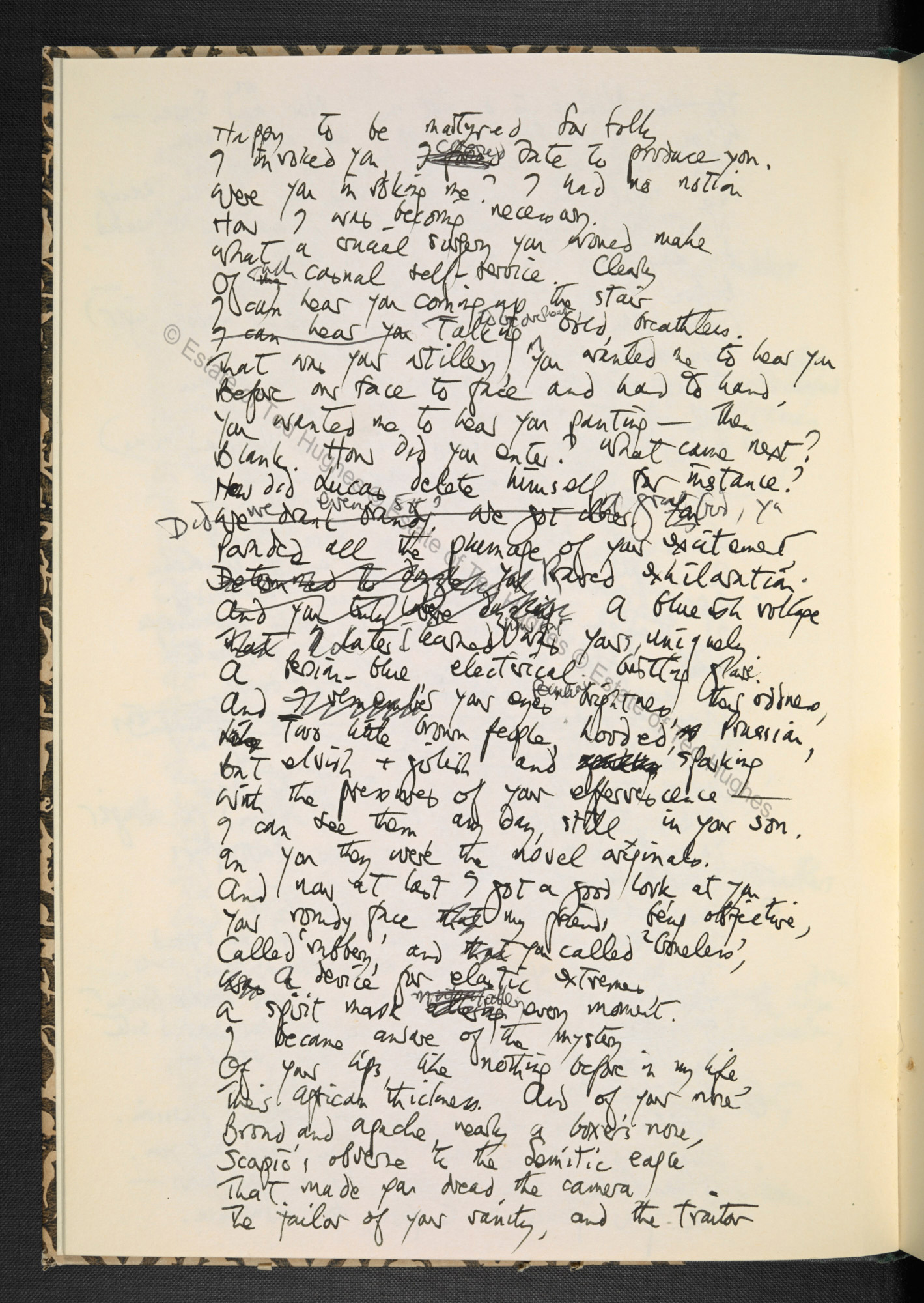 birthday letters ted hughes online