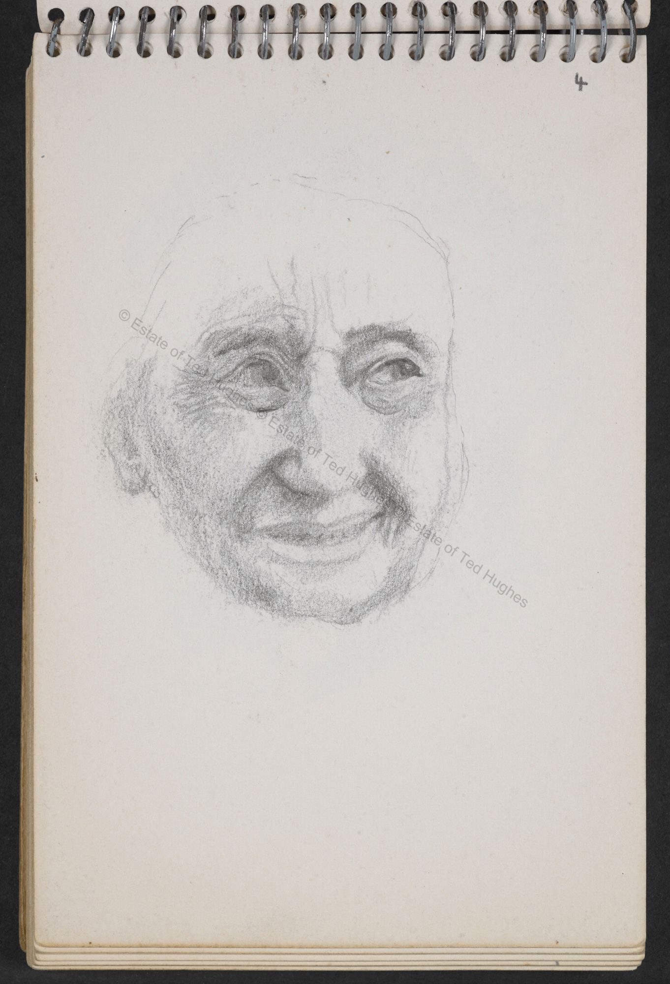 Sketches by Ted Hughes