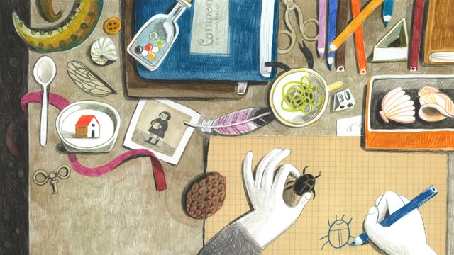 Overhead view of a desk.  The person is drawing a bug, which they hold in one hand. The desk is full of shells, pencils string, photographs and other trinkets.