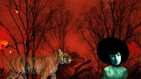 Trees, a tiger, a fox and a face on a red background