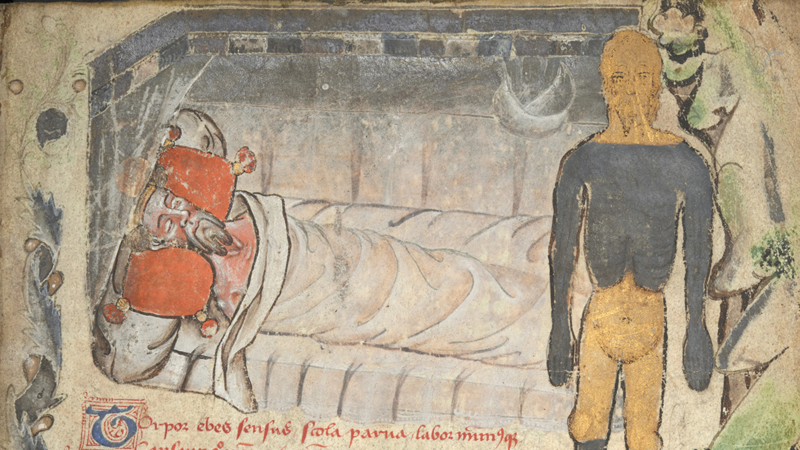 Image result for medieval manuscript nightmare