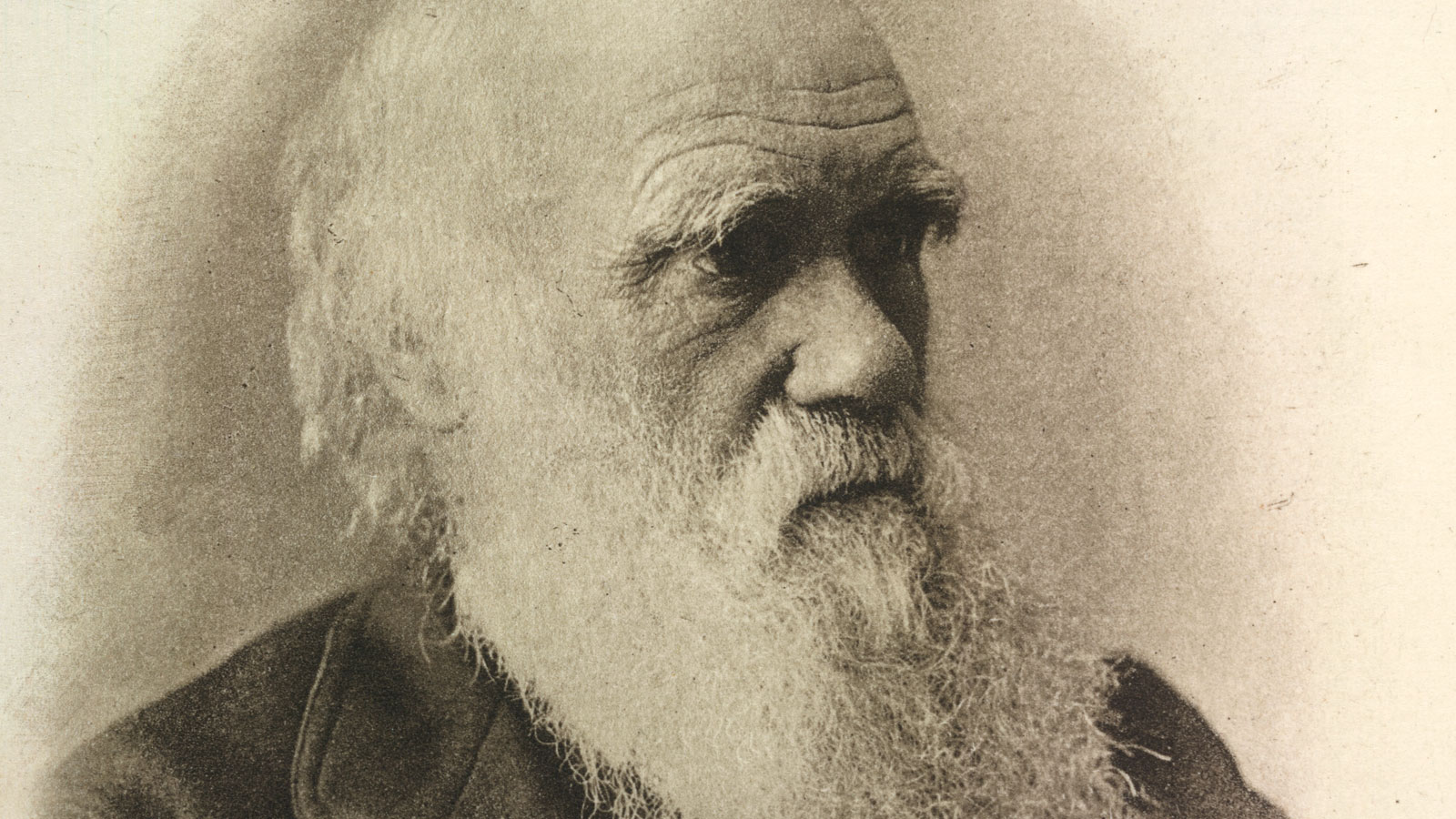 Darwin and the theory of evolution