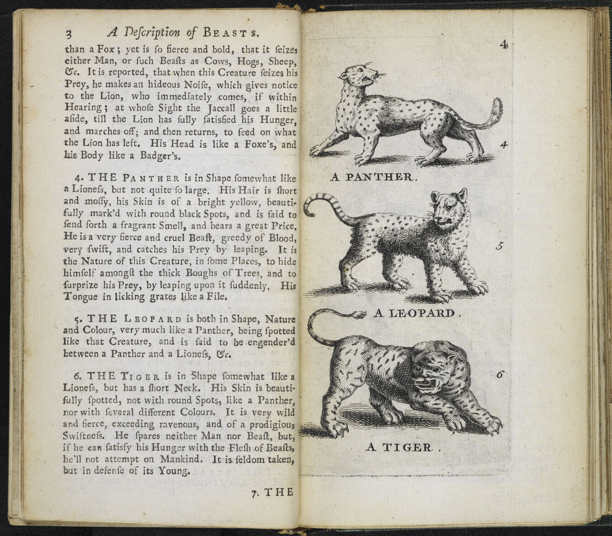 A Description of Three Hundred Animals [page: 3-4]