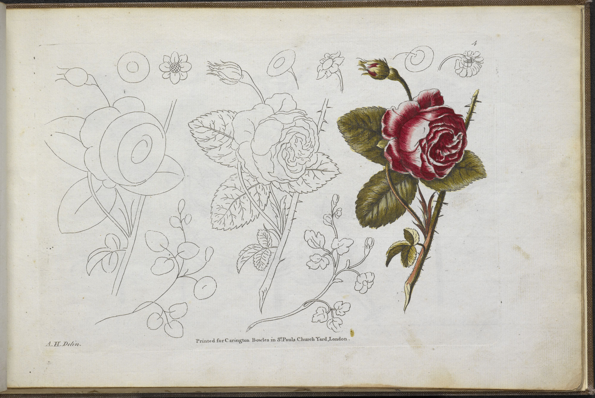 Bowles's Drawing Book for Ladies [page: plate 4]