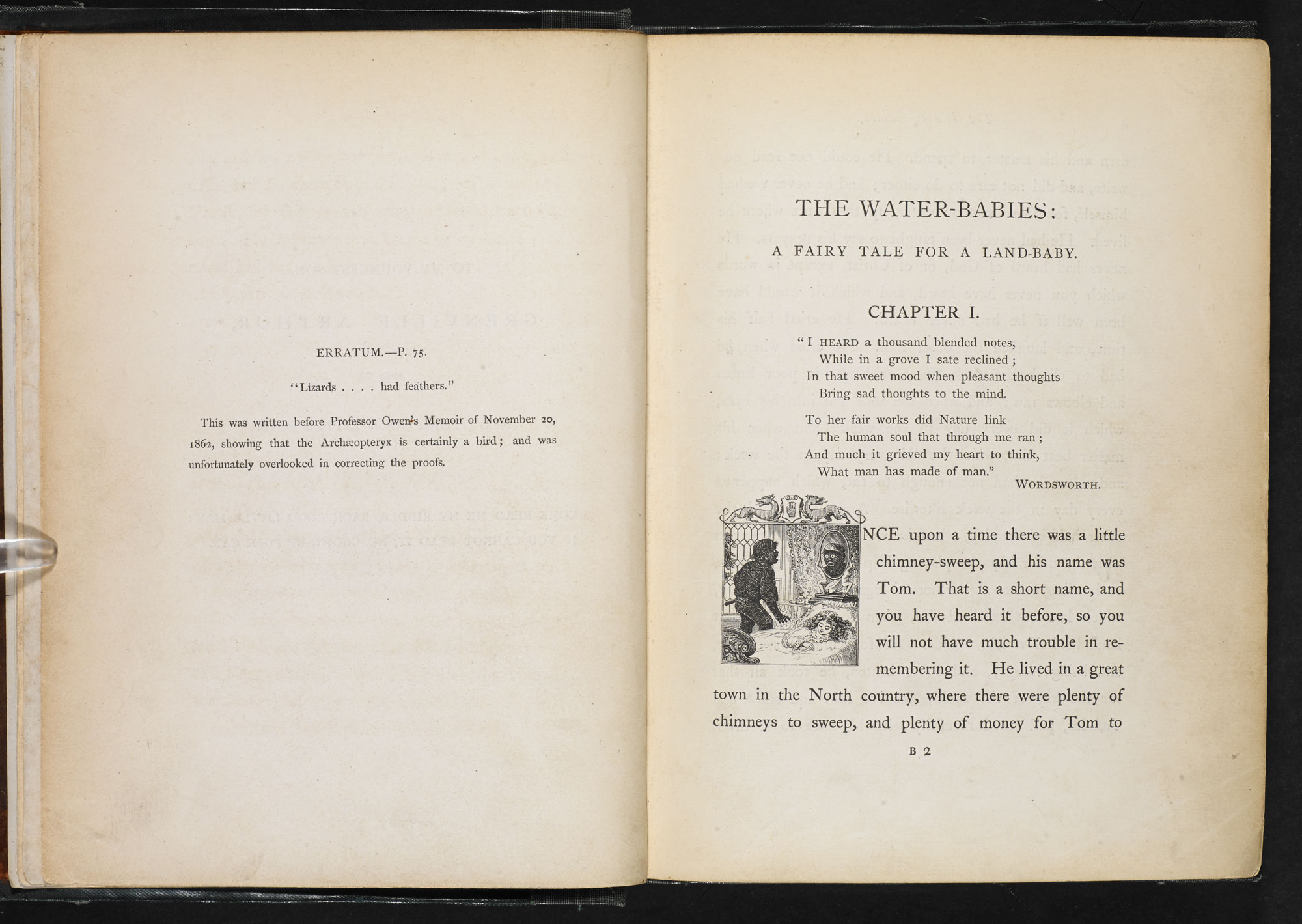 Charles Kingsley's The Water-Babies [page: 2-3]