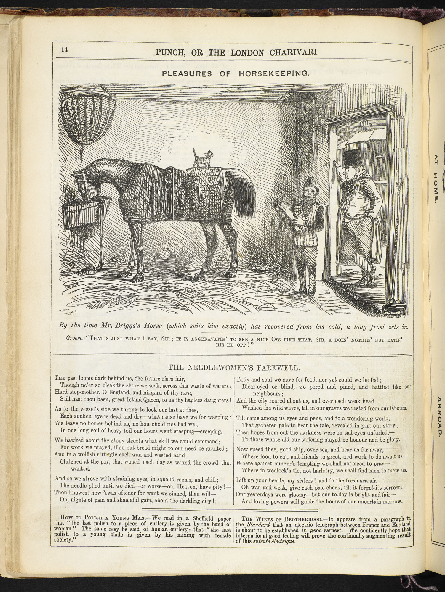 Punch illustration comparing a needleworker in England and in Europe [page: 14]