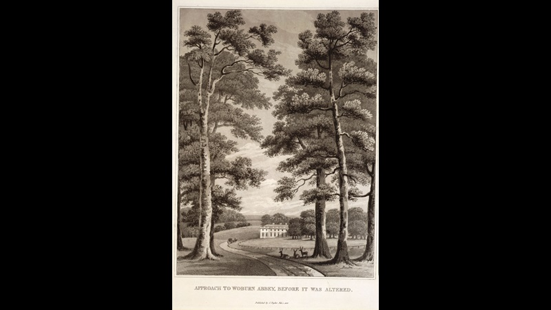 Fragments on the theory and practice of Landscape Gardening by Humphry Repton [page: after p. 164]