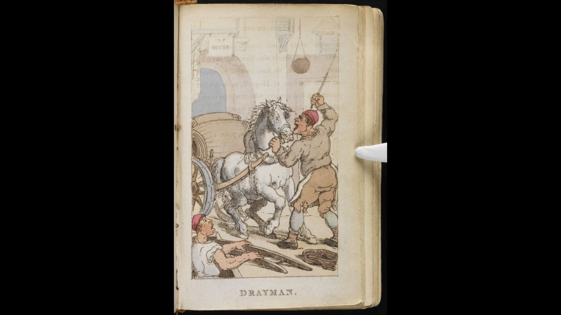 Rowlandson's Characteristic Sketches of the Lower Orders [page: ['Drayman']]