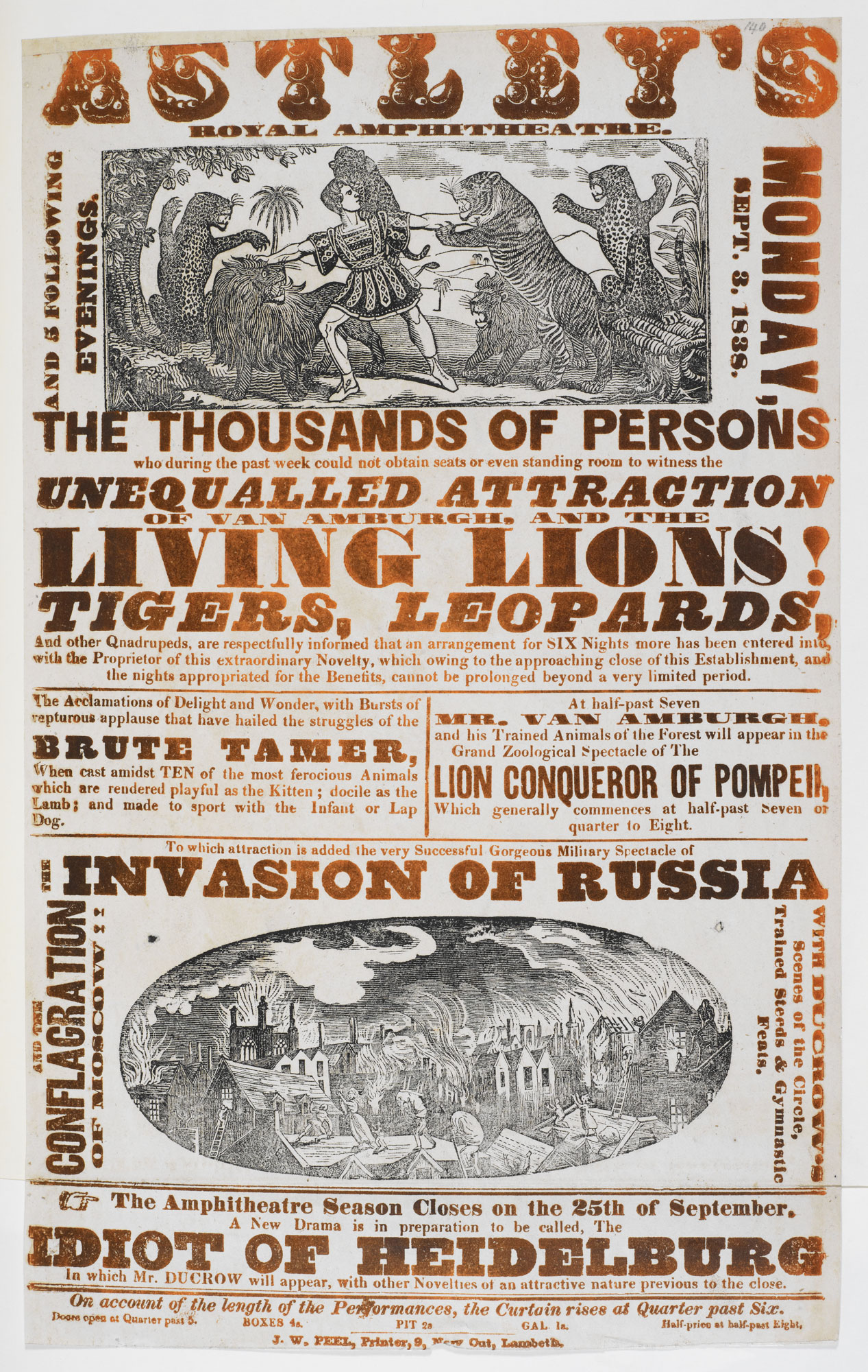 Circus poster: The living lions [page: single sheet]