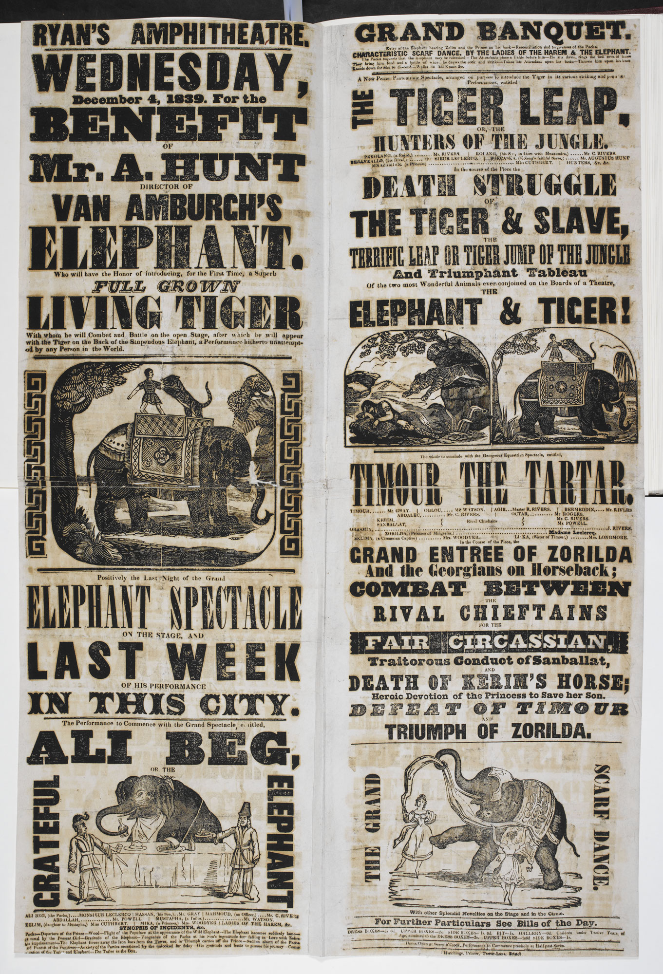 Circus poster: Full Grown Living Tiger [page: single sheet]