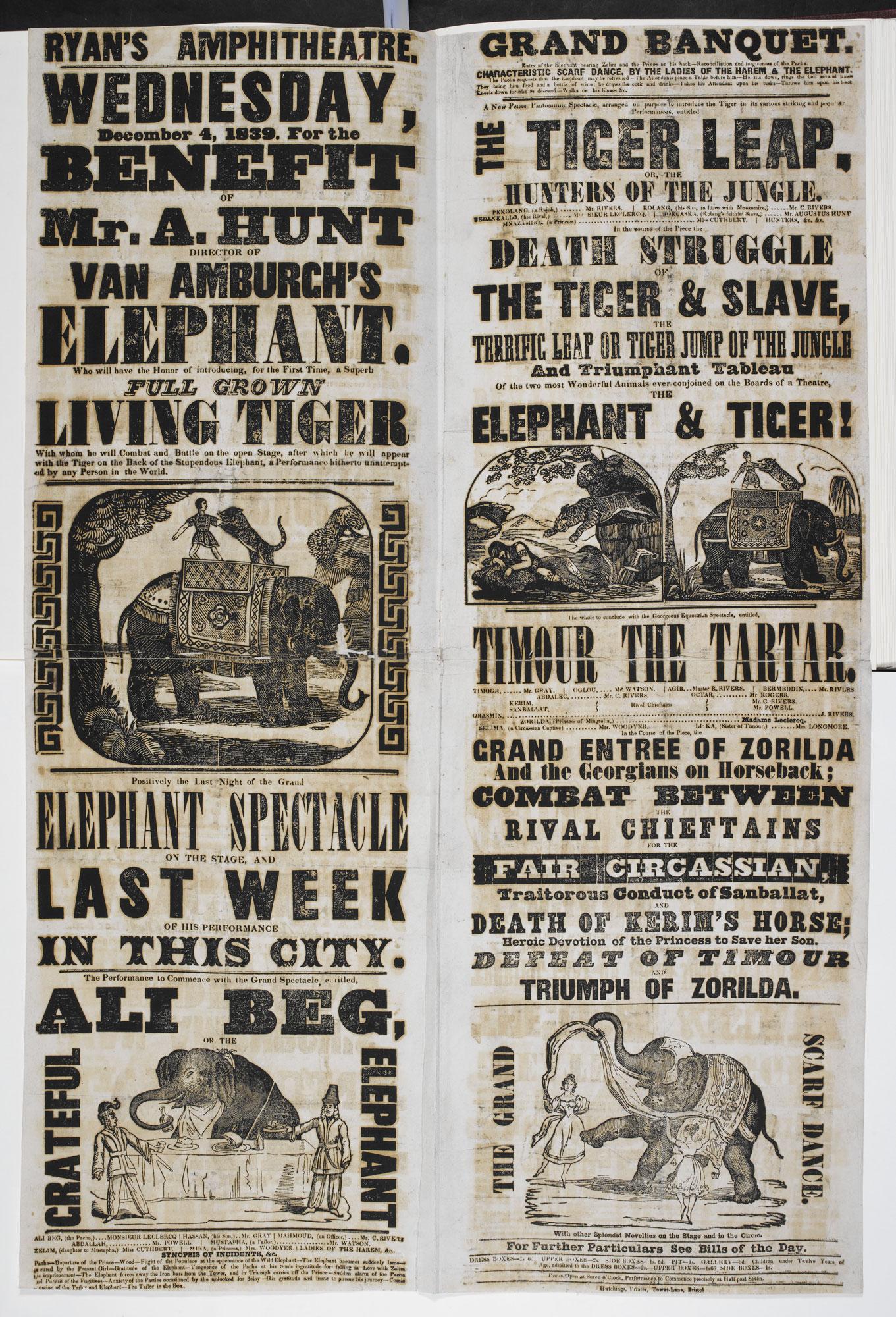 Circus poster: Full Grown Living Tiger [page: single sheet]