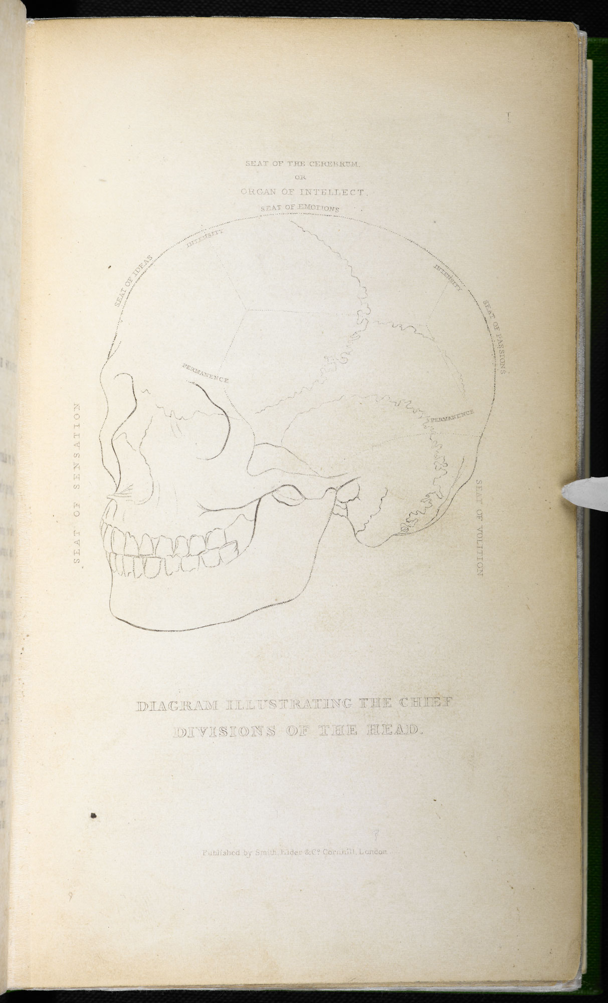 Phrenological diagrams by Alexander Walker [page: facing p. 20]