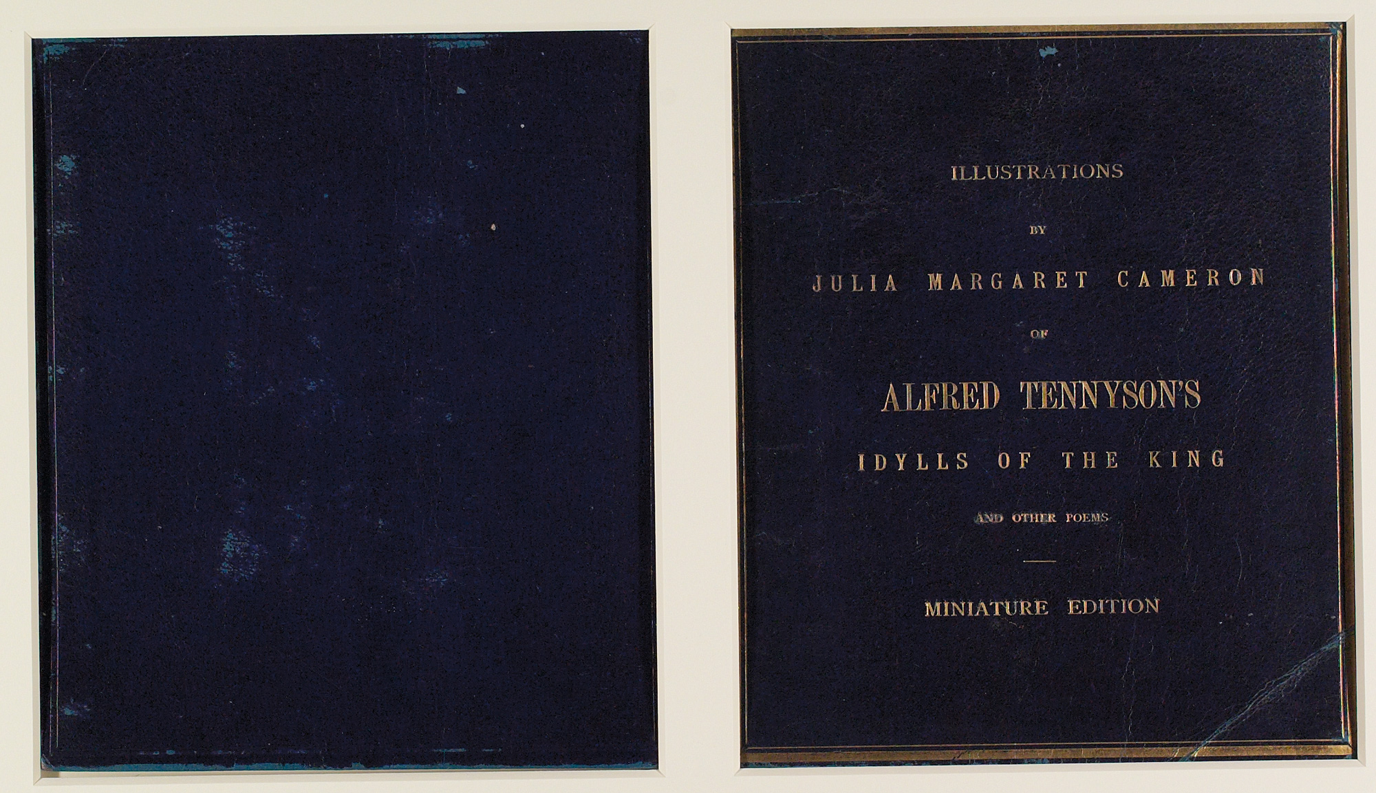Alfred Tennyson's Idylls of the King, photographically illustrated by Julia Margaret
