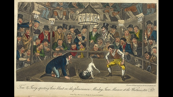 Illustration depicting a bustling crowd watching two dogs fight, from Life in London